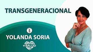 TRANSGENERACIONAL - por Yolanda Soria