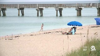 Tourism looking up for Palm Beach County