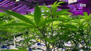 Gov. Evers has proposed legalizing recreational marijuana