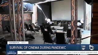 Survival of San Diego cinema during pandemic