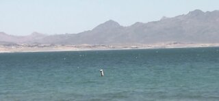 Further drop in Lake Mead water level could trigger water shortage declaration
