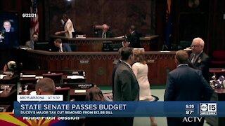 Arizona state senate passes budget