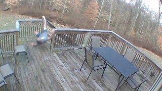 Security Camera Fails