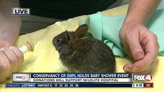 Conservancy of SWFL holds baby shower event to benefit wildlife hospital