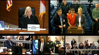 Florida high school mass shooting suspect makes first court appearance