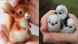 Cute baby animals Videos Compilation cute moment of the animals - Cutest Animals #13
