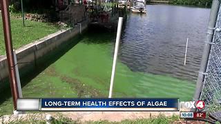 Algae could cause liver problems