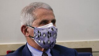 Fauci: Trump, Pence, Biden And Harris Should Get Vaccinated