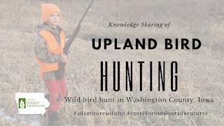 Iowa Outdoor Adventures - Pheasant Hunt Private Land in Iowa