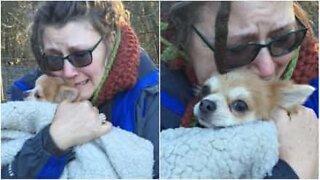 Et emosjonelt øyeblikk der familien blir gjenforenet med sin savnede hund