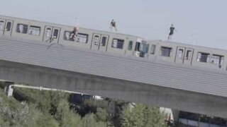 Young men dive off a moving train
