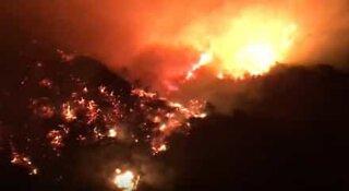 Vaikuttava video yhdestä Kaliforniaan iskeneestä neljästä metsäpalosta