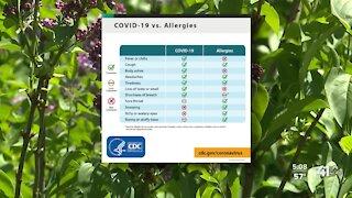 Allergies v. COVID-19