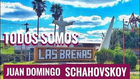Todos somos Juan Domingo Schahovskoy
