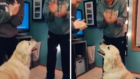 Owners make dog happy by randomly applauding for no reason