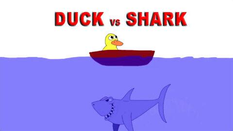 Duck vs Shark