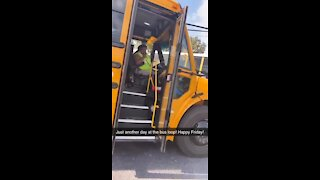 Middle school bus driver sings her heart out for her passengers