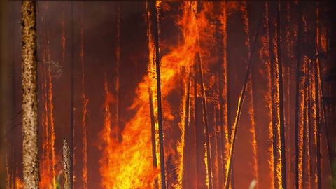Campers Burning Human Waste Started 500-plus Acre Fire