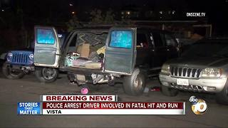 Police arrest driver involved in fatal hit-and-run