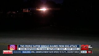 Two people suffer serious injuries from dog attack