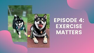 Exercise Matters