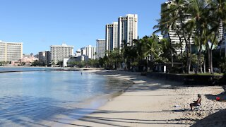 Vaccinated Hawaiian positive for delta variant after traveling to Nevada