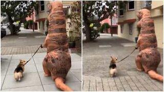 T-rex går tur med en hund i San Franciscos gater