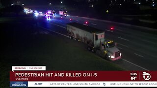 Pedestrian hit and killed by semi