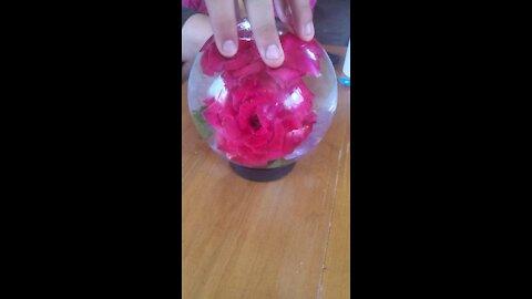 Flower aquarium
