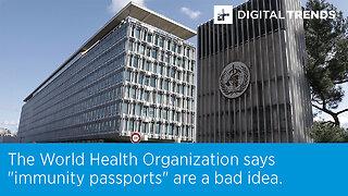 "The World Health Organization says ""immunity passports"" are a bad idea."