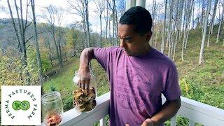 Homemade Apple Cider Vinegar (ACV)