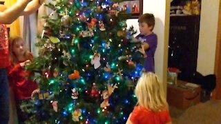 Delaney Family Tree Decorating 2020