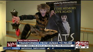 Human to Feline: Travis Guillory tranforms into cat from Cats musical