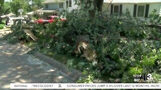 Mayor Stothert: Storm debris pickup efforts to be extended