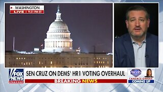 Cruz: Dems Are Trying to Manipulate And Steal Election Results