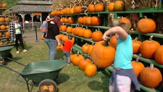 CDC issues guidelines for fall and Halloween safety