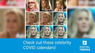 Check out these celebrity COVID calendars!