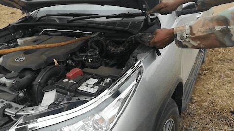 Python Gets Stuck In Car Bonnet!