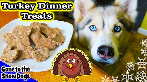 DIY dog treats: Thanksgiving dinner for dogs