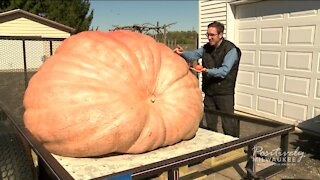 The heaviest pumpkin in Wisconsin weighs 2,015 pounds