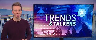 Trends and Talkers: Sombrero pigeons, green puppy and bears