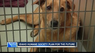 State of 208: Idaho Humane Society Plans for Growth