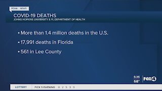Covid deaths in the United States