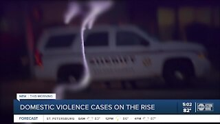 Domestic violence cases on the rise