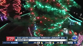 Denver Zoo Lights is lit up for the season