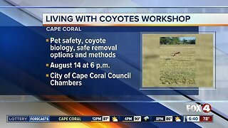 Cape Coral hosting Living With Coyotes workshop Wednesday