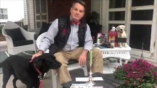PET TALK TUESDAY - HOUSEHOLD HAZARDS