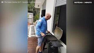 Família encontra cobra píton dentro de churrasqueira