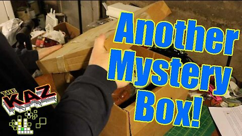 Find out What's Inside the Mystery Box!