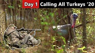 Mississippi Midday Gobbler - Calling All Turkeys